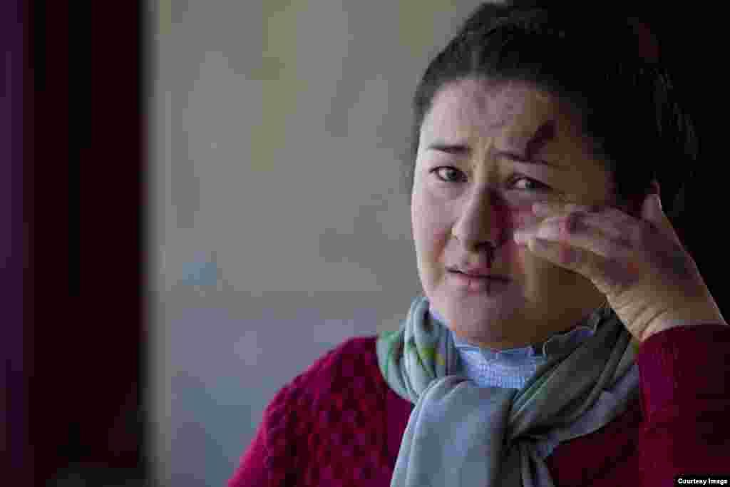 Жаловавшиеся на семейное насилие были избиты в 74,5 процентах случаев, 24,9 процента людей подверглись психологическому давлению.
