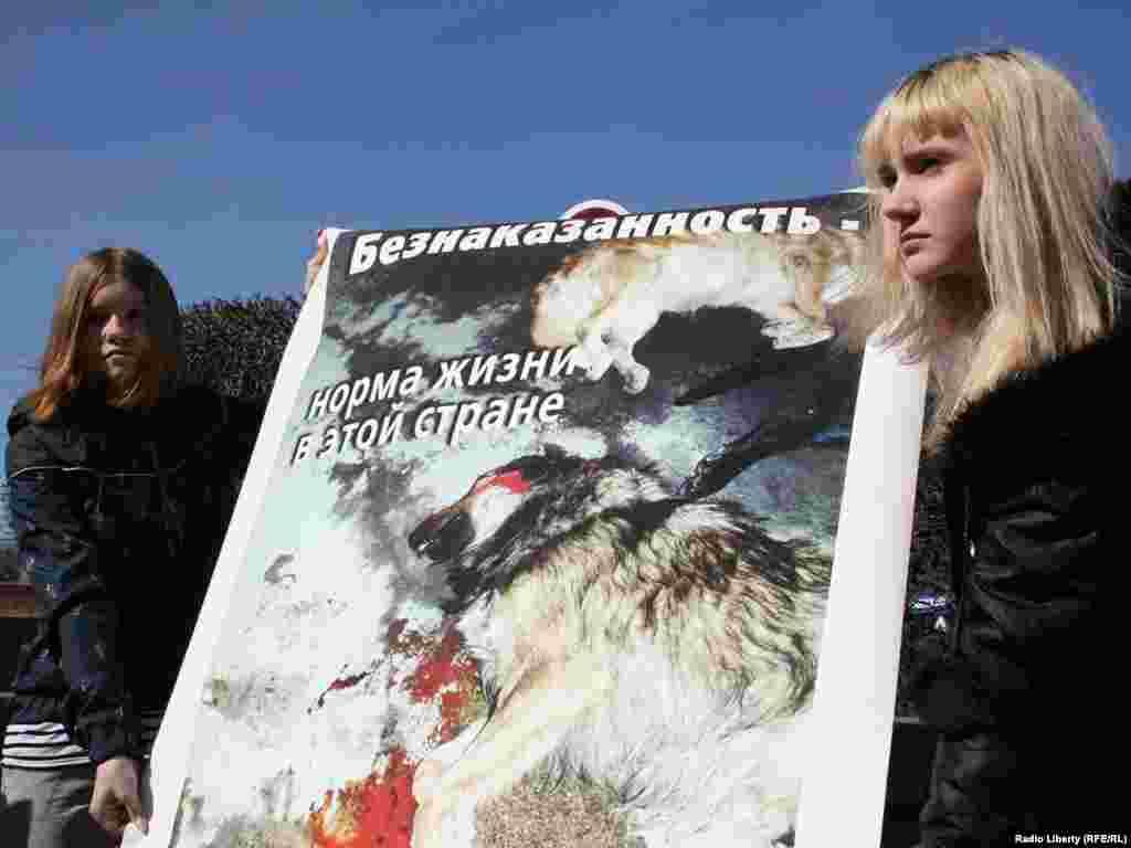 Собравшиеся предложили ввести по всей России программу стерилизации, регистрации бездомных животных...