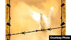 طرح جلد کتاب هرمن روزنبلات با عنوان «فرشته پای سیم خاردار»
