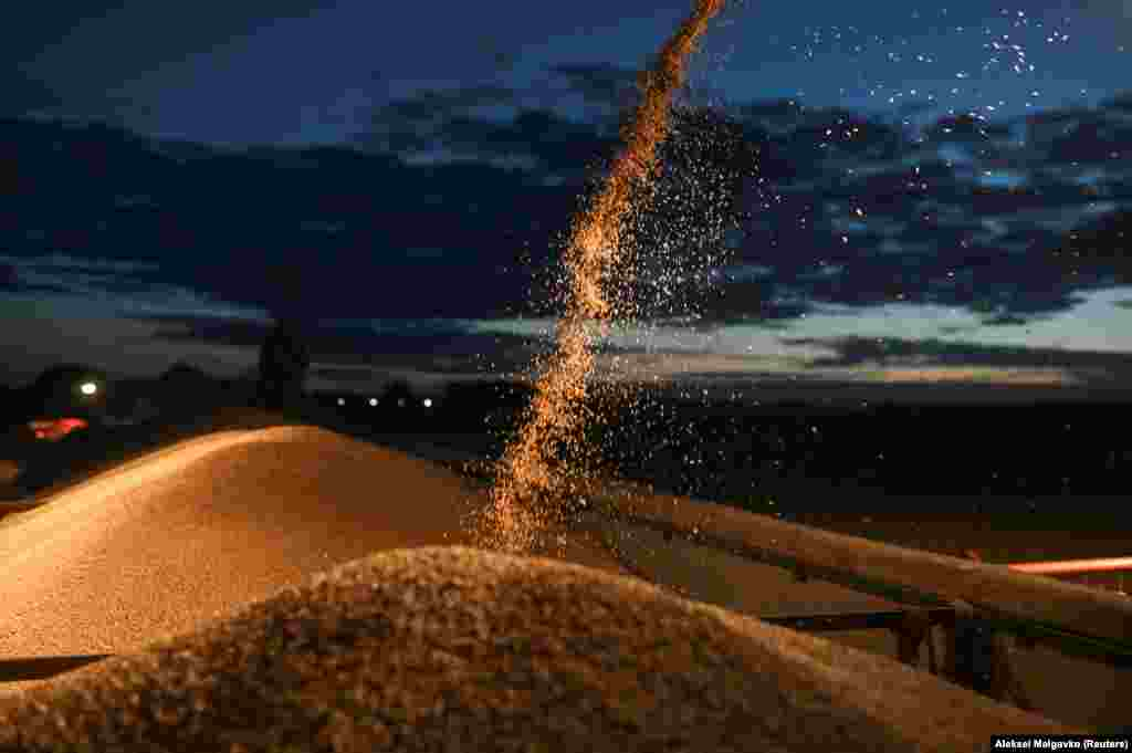 A combine harvester loads a truck with wheat during harvesting in Russia's Omsk region. (Reuters/Alexey Malgavko)