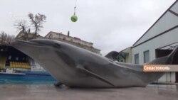 «Дезертири» та «бойові дельфіни» (відео)