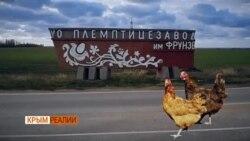 «Упадок начался, когда пришла Россия» (видео)