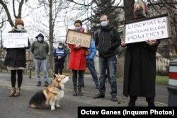 Бухаресттеги Орусиянын элчилигинин алдында А.Навальныйды бошотуу талабы менен нааразылык чарасы өткөрүлдү.Румыния. 2021-жылдын 7-февралы.
