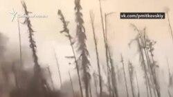 Звезды призвали чиновников потушить лесные пожары в Сибири