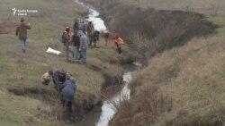 Plopi pe Hîrtop - pentru protecția mediuliu dar și a comunității