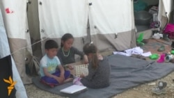 Мигрантите во Табановце спасот го гледаат само на север