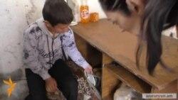 Հայաստանում յուրաքանչյուր 5-րդ երեխան թերսնվում է