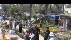 رواج بيع الورود والنباتات