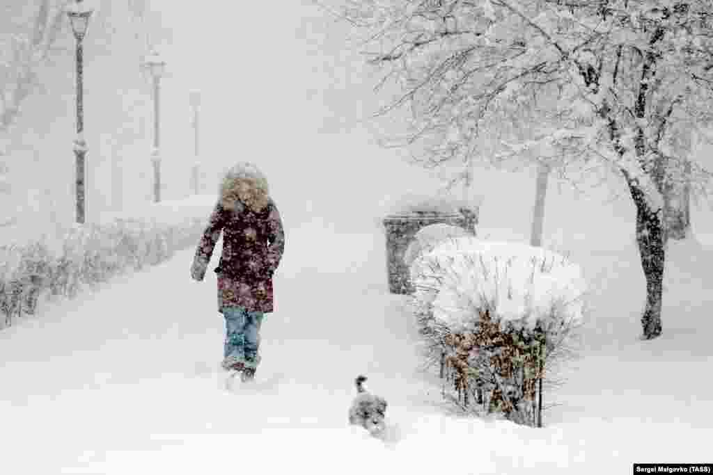 Жінка під час снігопаду на одній з вулиць Сімферополя 13 лютого. Більше фотографій засніженого Криму ‒ дивіться у фотогалереї