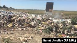 Полигон твердых бытовых отходов близ Уральска. Июль 2018 года.