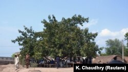 FILE: People gather under a tree where a village council ordered to rape a 16-year-old girl in Punjab.