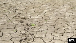 """Lacul de acumulare secat de la """"Studena"""", care a lăsat fără apă potabilă locuitorii din Pernik."""
