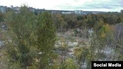 Карбышев-Комаров чатындагы яшеллек