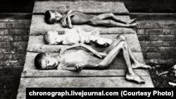 Голод в ТАССР. Фотогалерея