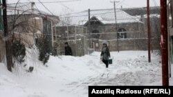 Arxiv fotosu. Bakı, 10 fevral 2012.