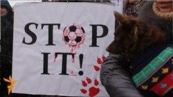 «Stop it! – Зупиніть вбивства безпритульних тварин!»