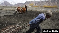 Father and son prepare a field for planting in the village of Salhad Breuhil, in Afghanistan's remote Wakhan Corridor.