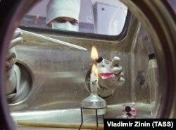 """Работа лаборатории опасных вирусных инфекций НИИ Молекулярной биологии """"Вектор"""" в Новосибирске"""