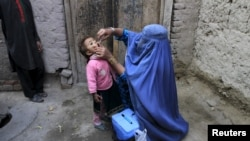 Afghanistan - A child receives a polio vaccination during an anti-polio campaign on the outskirts of Jalalabad, Afghanistan, December 1, 2015