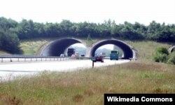 نمونهای از گذرگاههای تردد حیات وحش مورد اشاره مدیر کل حفاظت محیط زیست استان لرستان. در عکس: یک بومگذر (ecoduct) در هلند.