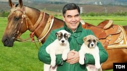 Gurbanguly Berdimuhamedow täze kitabyny itlere bagyşlady. 16-njy maý, 2019. TDH-nyň suraty.