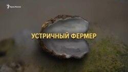 «Устричные войны» в Крыму (видео)