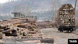 Вступление России в ВТО зависит от того, как решится вопрос о таможенных пошлинах на круглый лес, заявила Финляндия