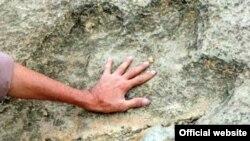 Dinozavr izlari Markaziy Osiyoda bundan avvalroq Turkmanistonda ham topilgan edi.