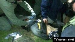 Boston Marathon bombing suspect Dzhokhar Tsarnaev lies injured as he is captured in Watertown, Massachusetts, on April 19.