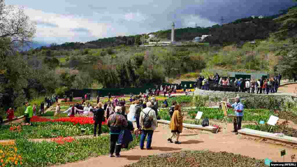 Никитский ботанический сад посещают практически круглый год. Кроме Парада тюльпанов, здесь проводятся балы хризантем, карнавалы ирисов, выставки орхидей и другие мероприятия.