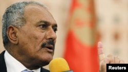 Yemeni President Ali Abdullah Saleh addresses a news conference in Sanaa on February 21.