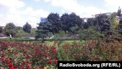 Троянди у Донецьку