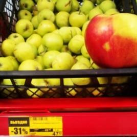 Импортозамешение. Снимок в магазине. Наши мелькие зелёные яблоки уценили на 30 %. Рядом для сравнения обычное польское яблоко, которое раньше продавалось по этой же цене.  Загрузил: Андрей