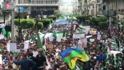 Алжирде мыңдаған адам тұтас режимнің ауысуын талап етті