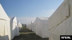 Şirvan şəhər çadır şəhərciyində hal-hazırda 204 çadır qurulub