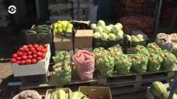 Азия: овощи в Казахстане становятся «золотыми»
