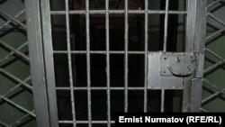 В Україні можуть садити під домашній арешт. Це пропонує проект нового Кримінально-процесуального кодексу