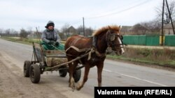 Moldova, People and Places in Leova, 12 December 2020