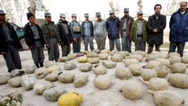 Police inspect piles of heroin discovered during an operation in Herat, Afghanistan