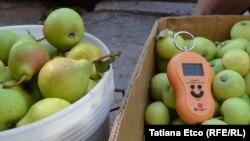 Producătorii de fructe ar printre cele mai afectate