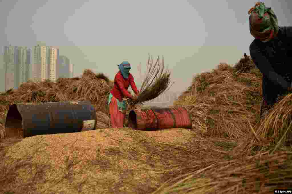 An under-construction high-rise residential building is seen behind as farm workers thrash freshly harvested paddy crop to separate the grains in Greater Noida, India. (AP/R.S. Iyer)