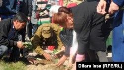 Горожане высаживают цветы на Фестивале тюльпанов. Шымкент, 12 марта 2016 года.
