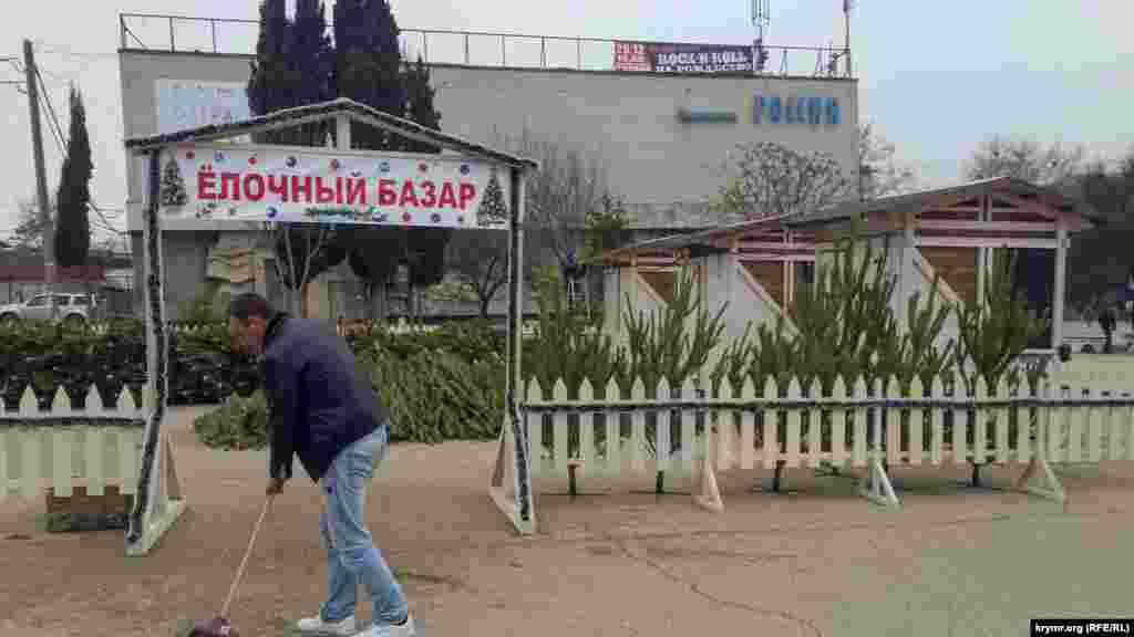 Крымской сосны, по заверению реализаторов, на рынках нет. Российские власти включили дерево в Красную книгу. За вырубку теперь полагается штраф