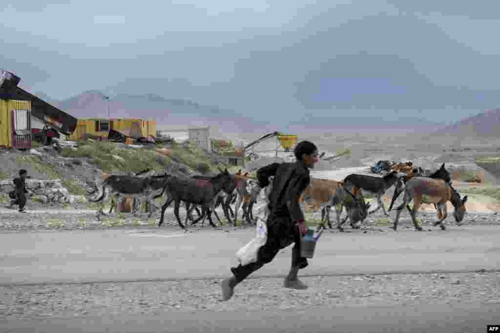 An Afghan boy runs with donkeys on the road to Bagram Airfield in Parwan on May 26. (AFP/Brendan Smialowski)