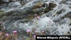 Mještani ne žele hidroelektranu na rijeci Kruščici