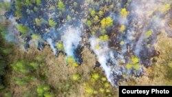 Лесные пожары в Карелии, 2021 год