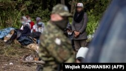 Migrants believed to be from Afghanistan on the Poland-Belarus border on August 20. (file photo)