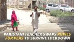 Pakistani Teacher Swaps Pupils For Pea Selling To Survive Lockdown
