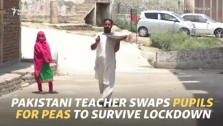 Pakistani Teacher Swaps Pupils For Pea Selling To Survive Lockdown