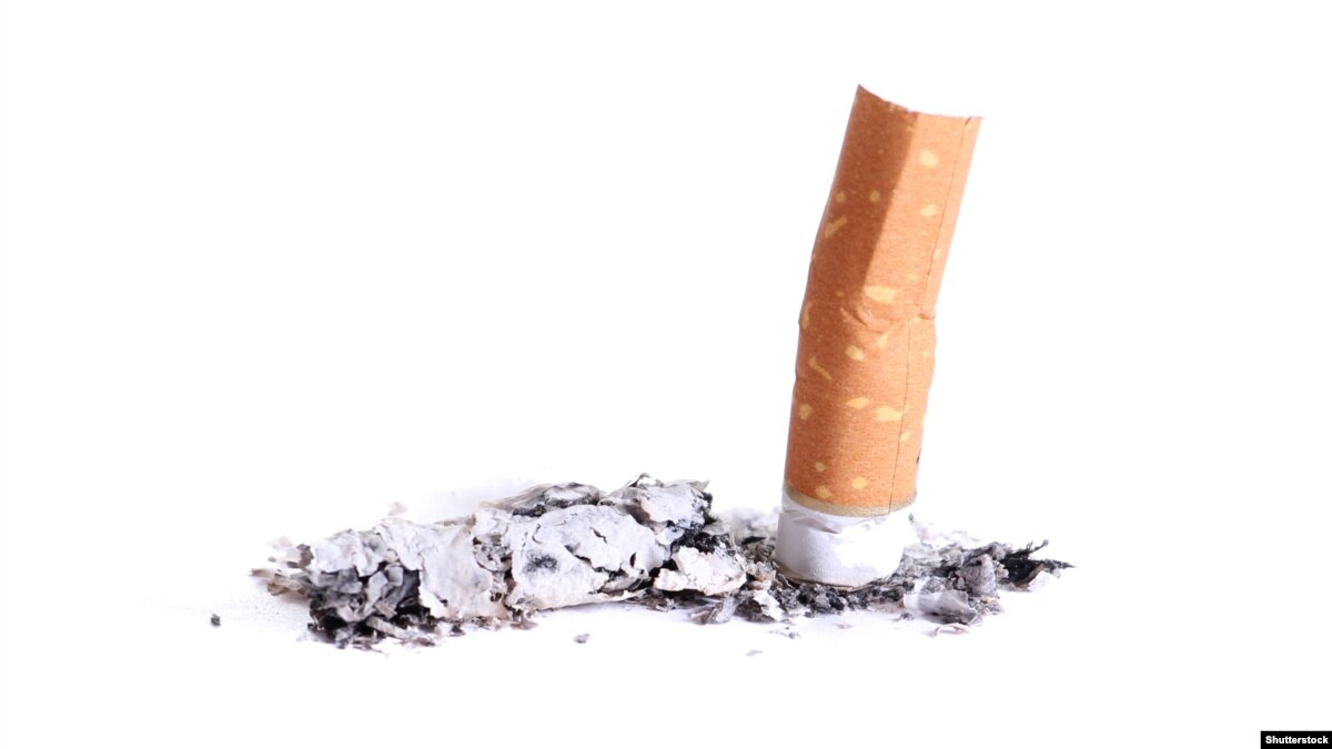 the end of smoking To address the criticism of the retrospective studies - and to strengthen the evidence that smoking is a cause of lung cancer - e cuyler hammond, phd, and daniel horn, phd, scientists working for the american cancer society, started work on what is known as a cohort study.
